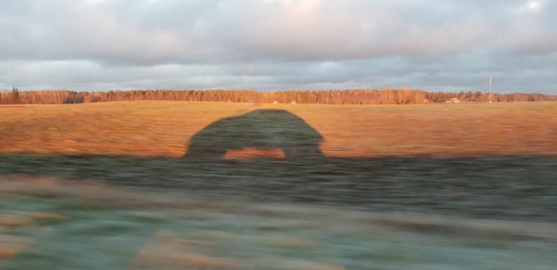 Auto maastikul