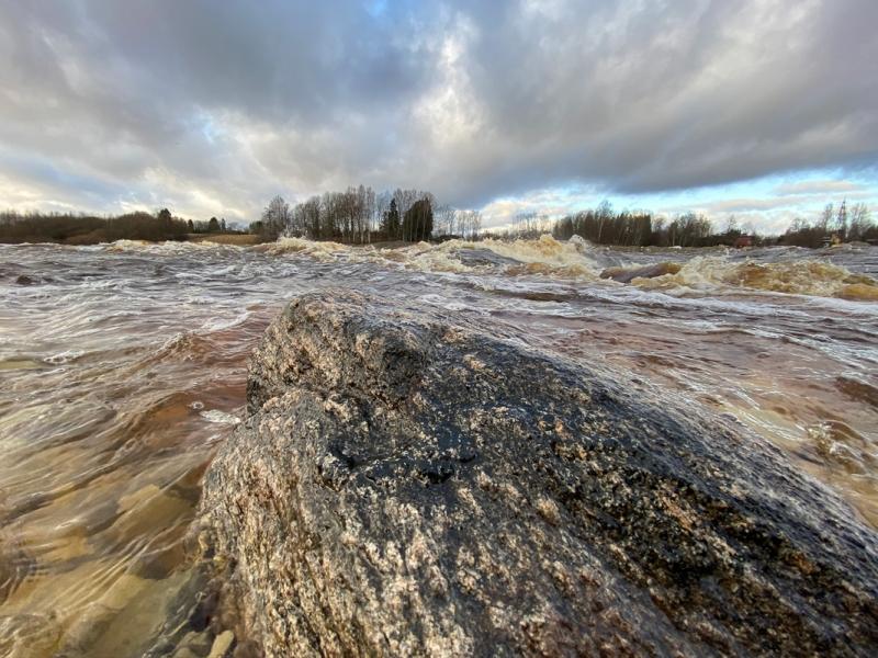 Pärnu jõgi