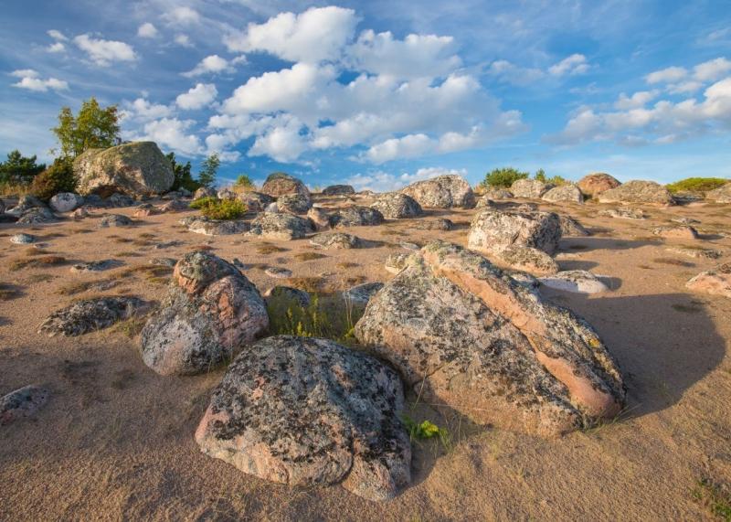 Mohni liiviku kivid