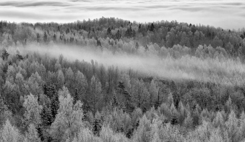 Üle metsade ja mägede