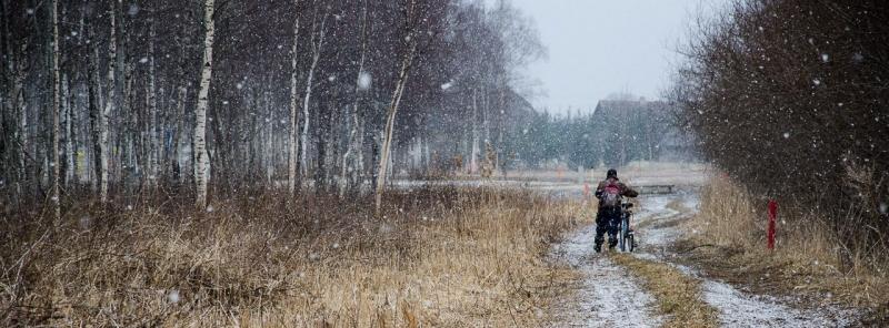 Aprillikuu lumesadu