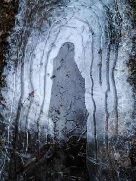 Neitsi Maarja ilmutus. Loodus pranandab seda mida inimesed lõhuvad.